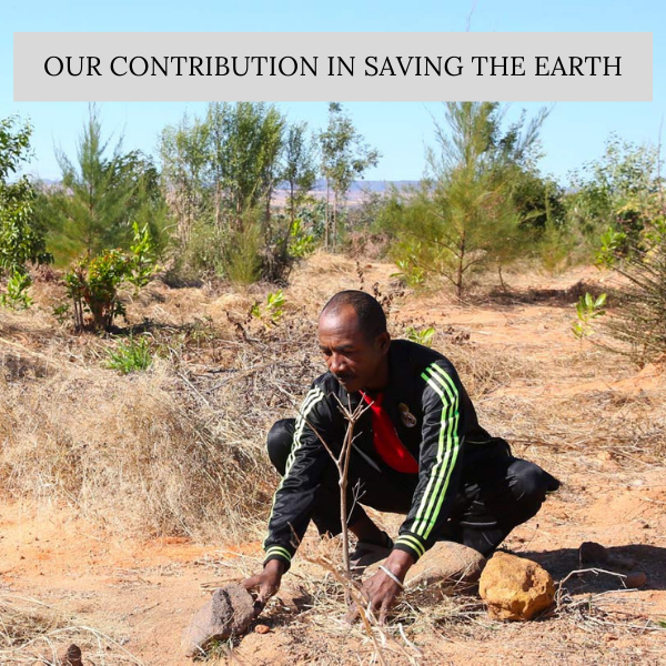 Our Contribution towards Saving the Earth